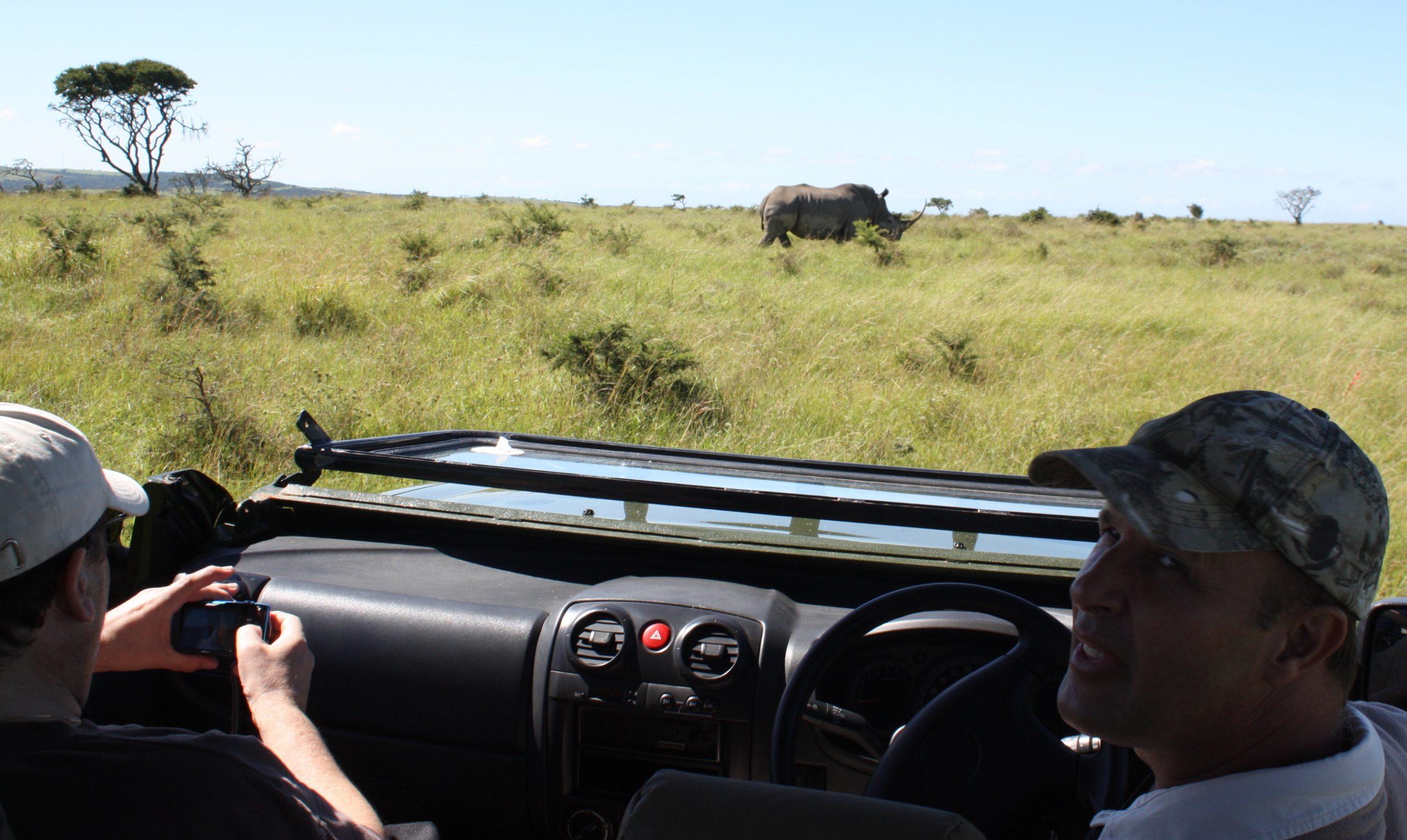 Road-trip en Afrique du Sud : une solution toute recommandée au pays